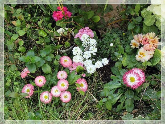 【トロワグロのトーストと春の花と時代は埼玉県】_b0009849_9233980.jpg