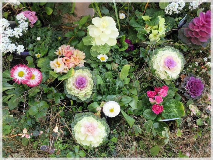 【トロワグロのトーストと春の花と時代は埼玉県】_b0009849_9245653.jpg