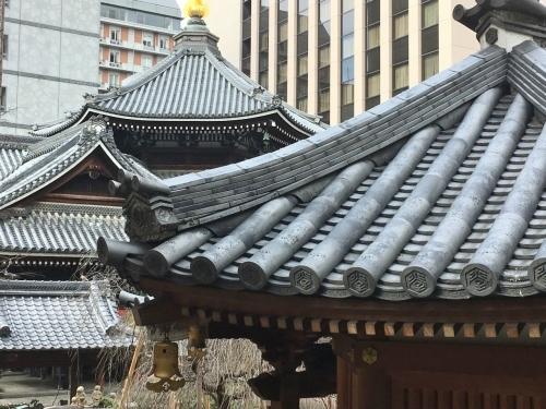 京都の旅\'19   その5_e0326953_22364411.jpg