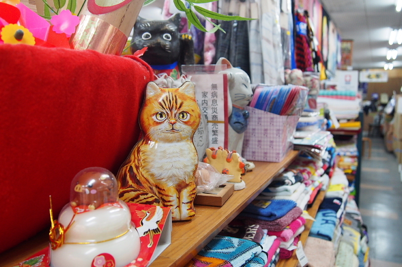 【沖縄で一番有名な猫店長】みーちゃんがいる嘉数商会@那覇_b0008655_14282270.jpg
