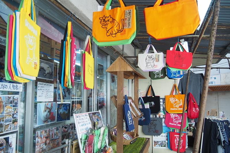【沖縄で一番有名な猫店長】みーちゃんがいる嘉数商会@那覇_b0008655_14283444.jpg