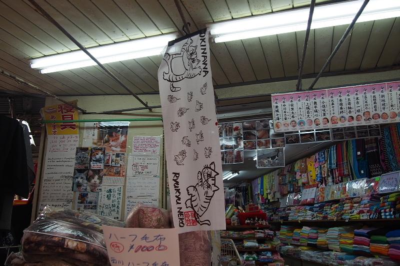【沖縄で一番有名な猫店長】みーちゃんがいる嘉数商会@那覇_b0008655_14331914.jpg
