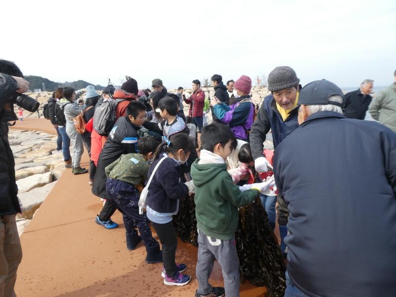 『みんなで一緒にワカメを育てよう:収獲祭り』・・・(せんなん里海公園:「しおさい楽習館」&「さとうみ磯浜」)_c0108460_20494796.jpg