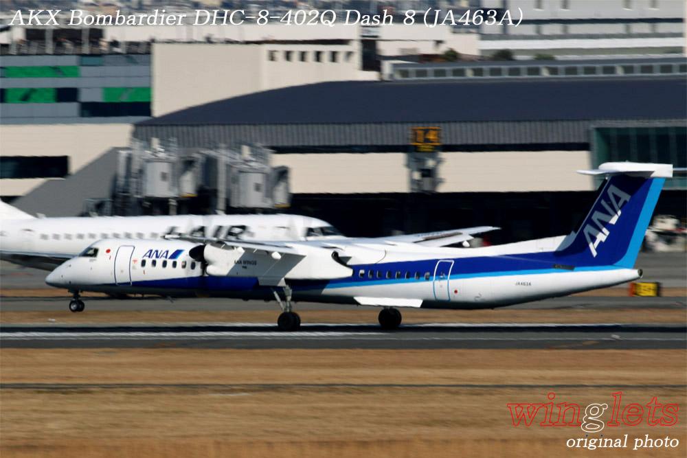 '19年 伊丹空港レポート・・・AKX/JA463A_f0352866_13533239.jpg