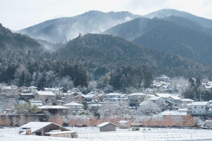 京都 大原雪景色 2019_f0021869_21451045.jpg