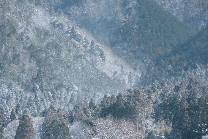 京都 大原雪景色 2019_f0021869_21451174.jpg