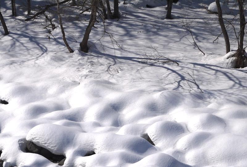 川の水面に雪の造形_b0068572_21424805.jpg