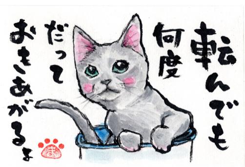 シェンランちゃん ロビンちゃん_f0375804_08410370.jpg