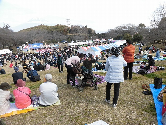初めて参加し多くの人出に驚いた! 梅が盛りの岩本山公園での「第20回 岩松北地区 梅まつり」_f0141310_07510455.jpg