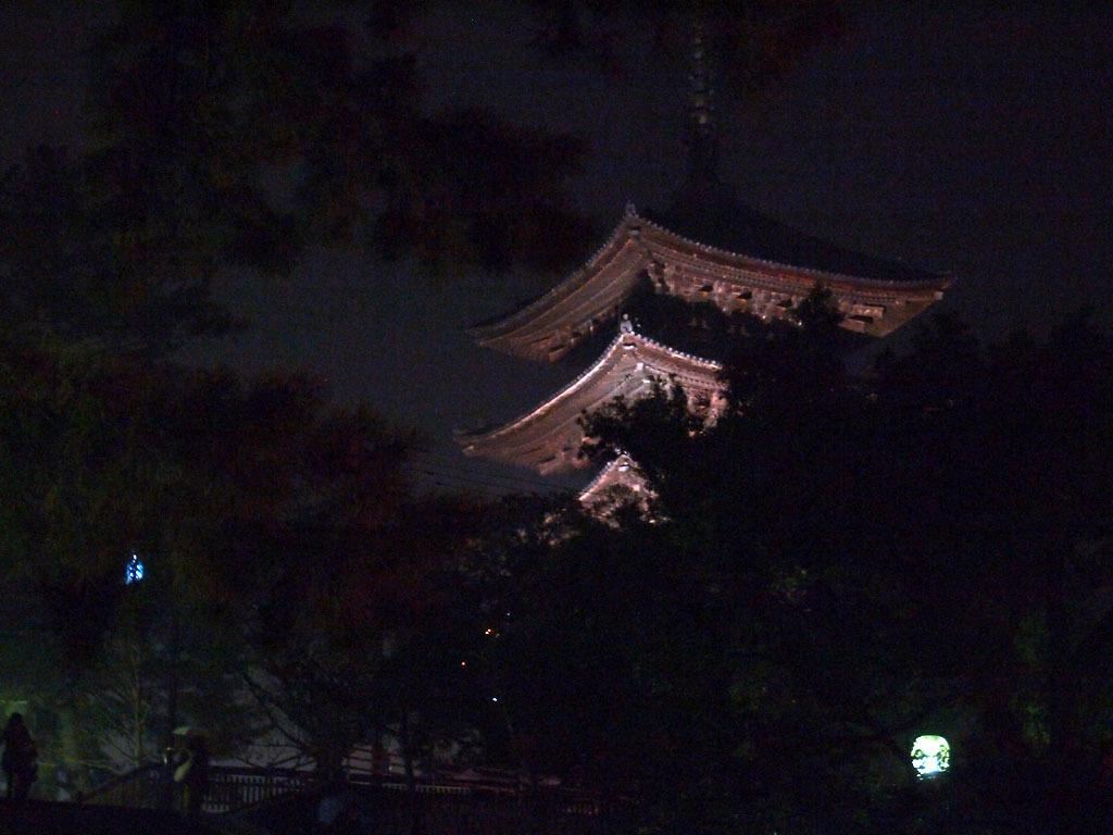 興福寺の追儺会_d0295818_15333650.jpg
