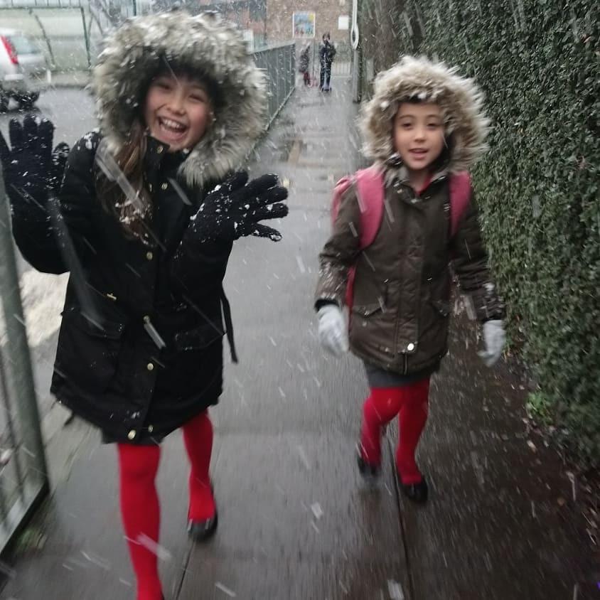 久々に雪が降る!!!_b0167736_08413814.jpg