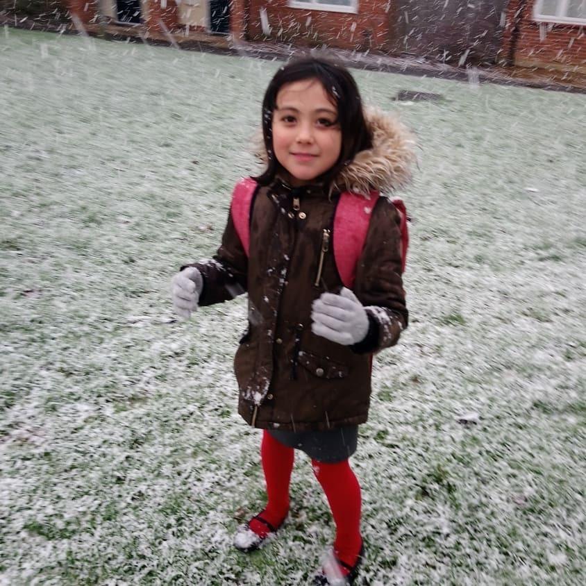 久々に雪が降る!!!_b0167736_08415860.jpg