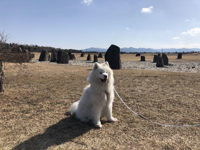 2019年冬 群馬~岐阜~石川県旅行 その1_f0128542_02114147.jpg