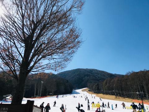 ☆ski tour☆_a0153945_21540811.jpg