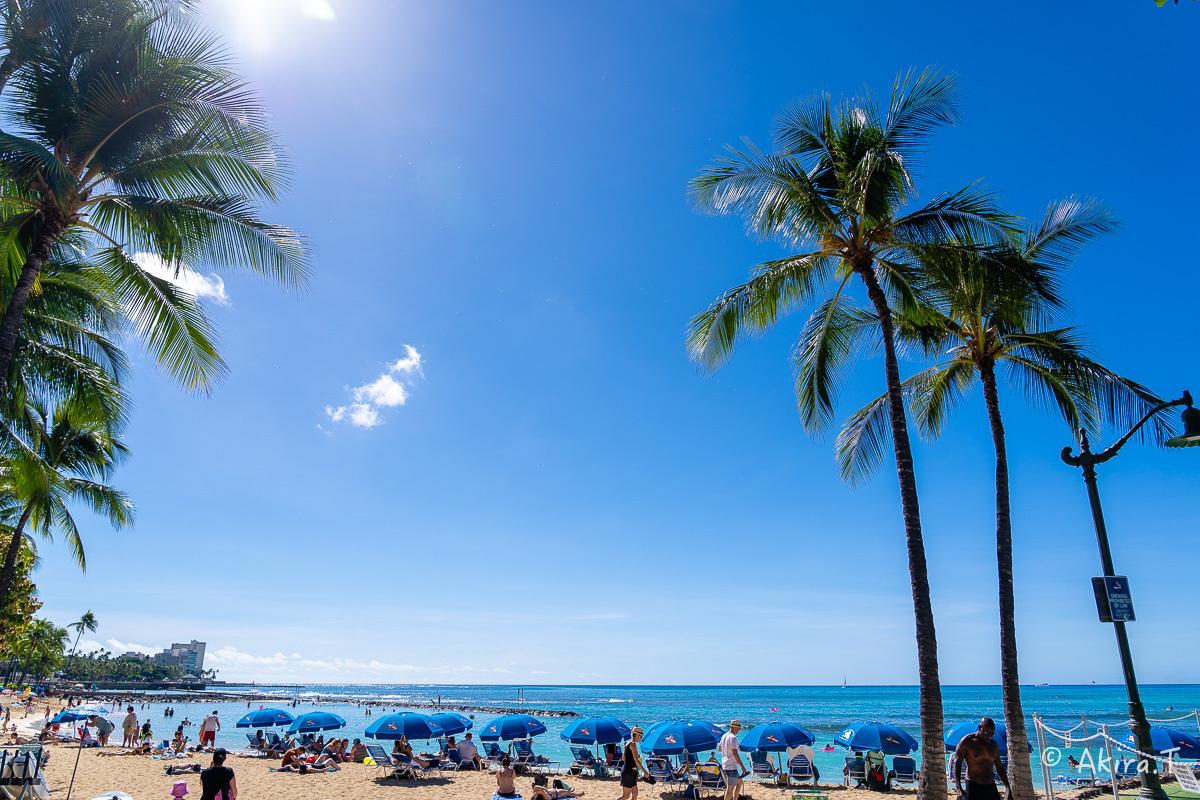 ハワイ -20-_f0152550_21514015.jpg