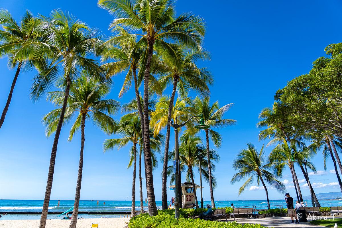 ハワイ -20-_f0152550_21525765.jpg