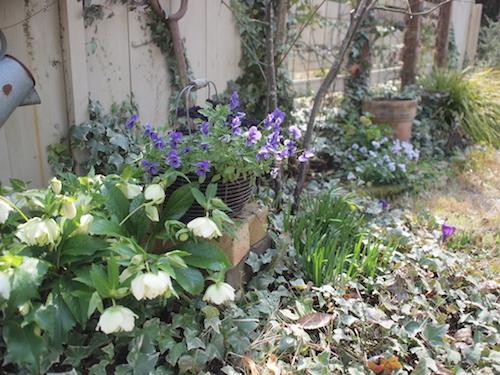 庭で充電_a0335560_21483346.jpg