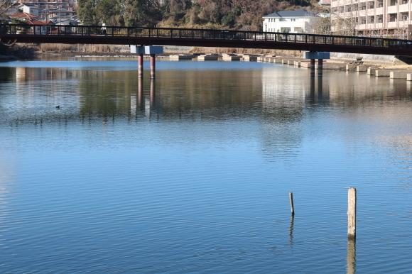 (番外編)赤が真ん中の坂を再訪 (奈良市)_c0001670_19295998.jpg