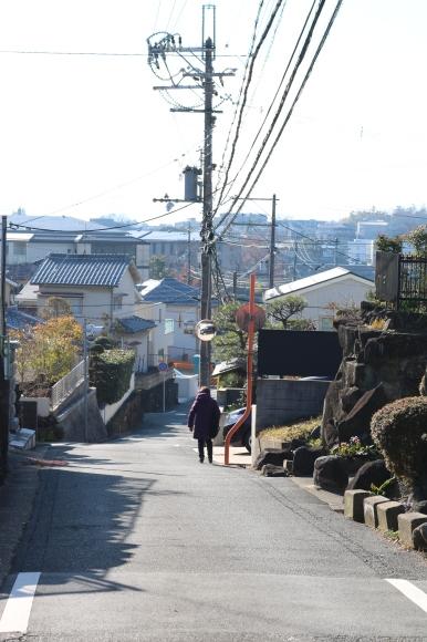 (番外編)赤が真ん中の坂を再訪 (奈良市)_c0001670_19361577.jpg