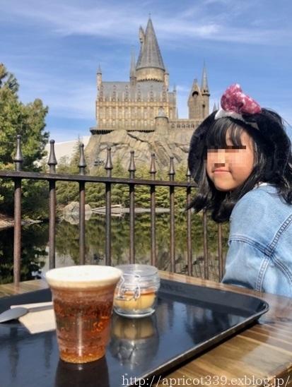 2019初春 娘と二人でユニバーサルスタジオジャパンへ_c0293787_16381967.jpg
