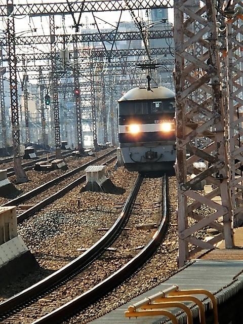 藤田八束の路面電車と観光、鹿児島の路面電車は面白く歴史感があるそして観光事業に貢献、神戸の街に路面電車が欲しい_d0181492_08254876.jpg