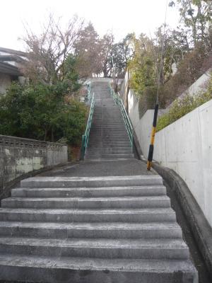 歩いた上った日曜日_a0124393_15311635.jpg