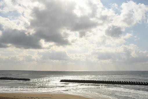 海辺の翌朝2019.02.22_b0259218_02413022.jpg