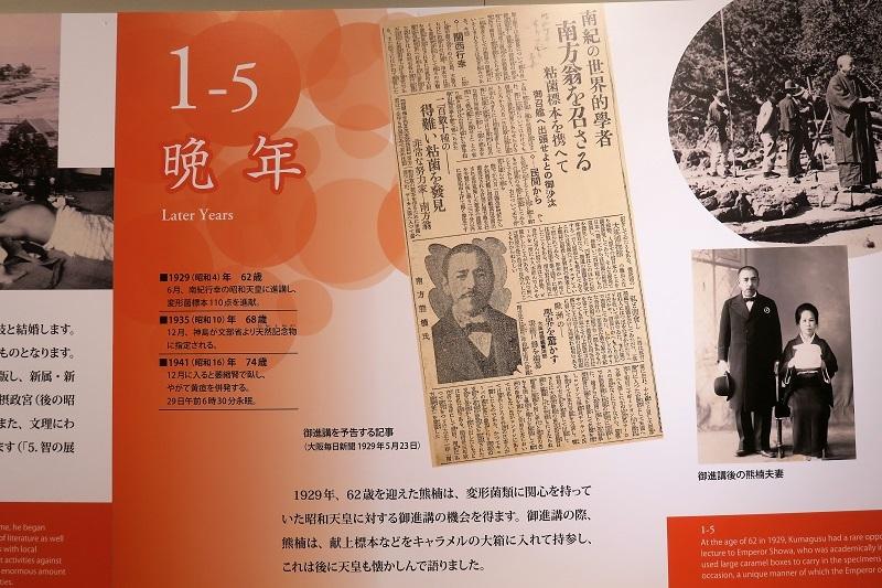 望桜荘を大谷石で飾る_f0076731_20512601.jpg