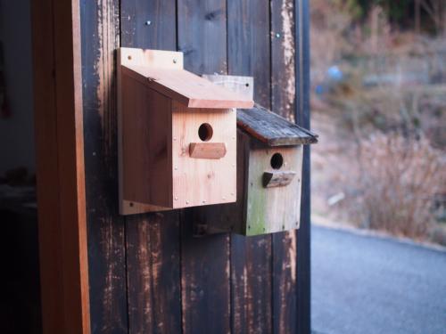鳥の巣箱を作ろう!!_b0185232_19260716.jpg