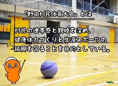 地区対抗ソフトバレーボール大会なのだ!_c0259934_16094801.jpg