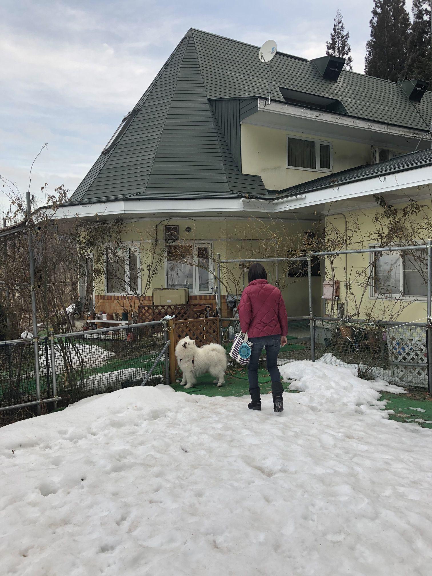 2019年冬 群馬~岐阜~石川県旅行 その2_f0128542_01221624.jpg