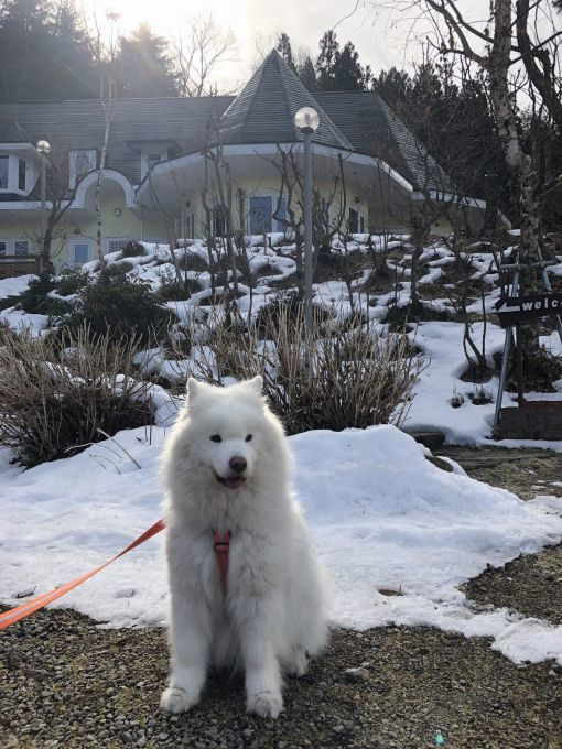 2019年冬 群馬~岐阜~石川県旅行 その2_f0128542_01254916.jpg