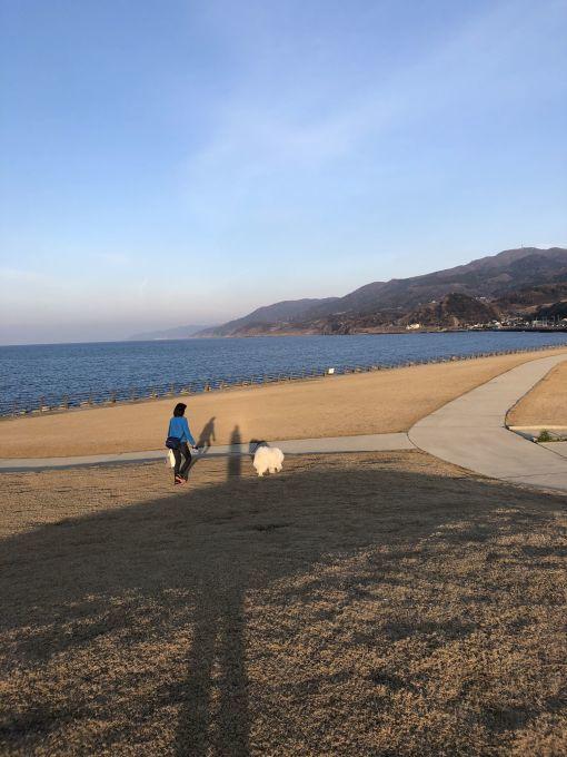 2019年冬 群馬~岐阜~石川県旅行 その2_f0128542_01433620.jpg