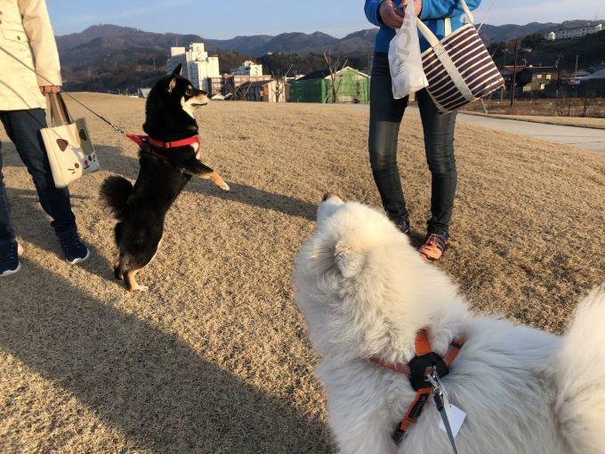 2019年冬 群馬~岐阜~石川県旅行 その2_f0128542_01442784.jpg