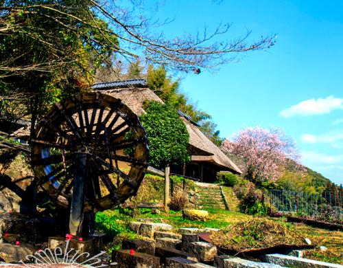 里山の春!_a0057752_09152665.jpg
