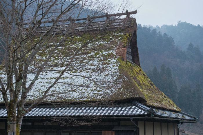 京都 美山_f0021869_22133716.jpg