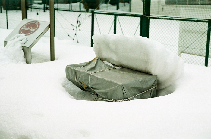 春を待つ岸辺の雪と地震で倒れた角煮雪_c0182775_1742732.jpg