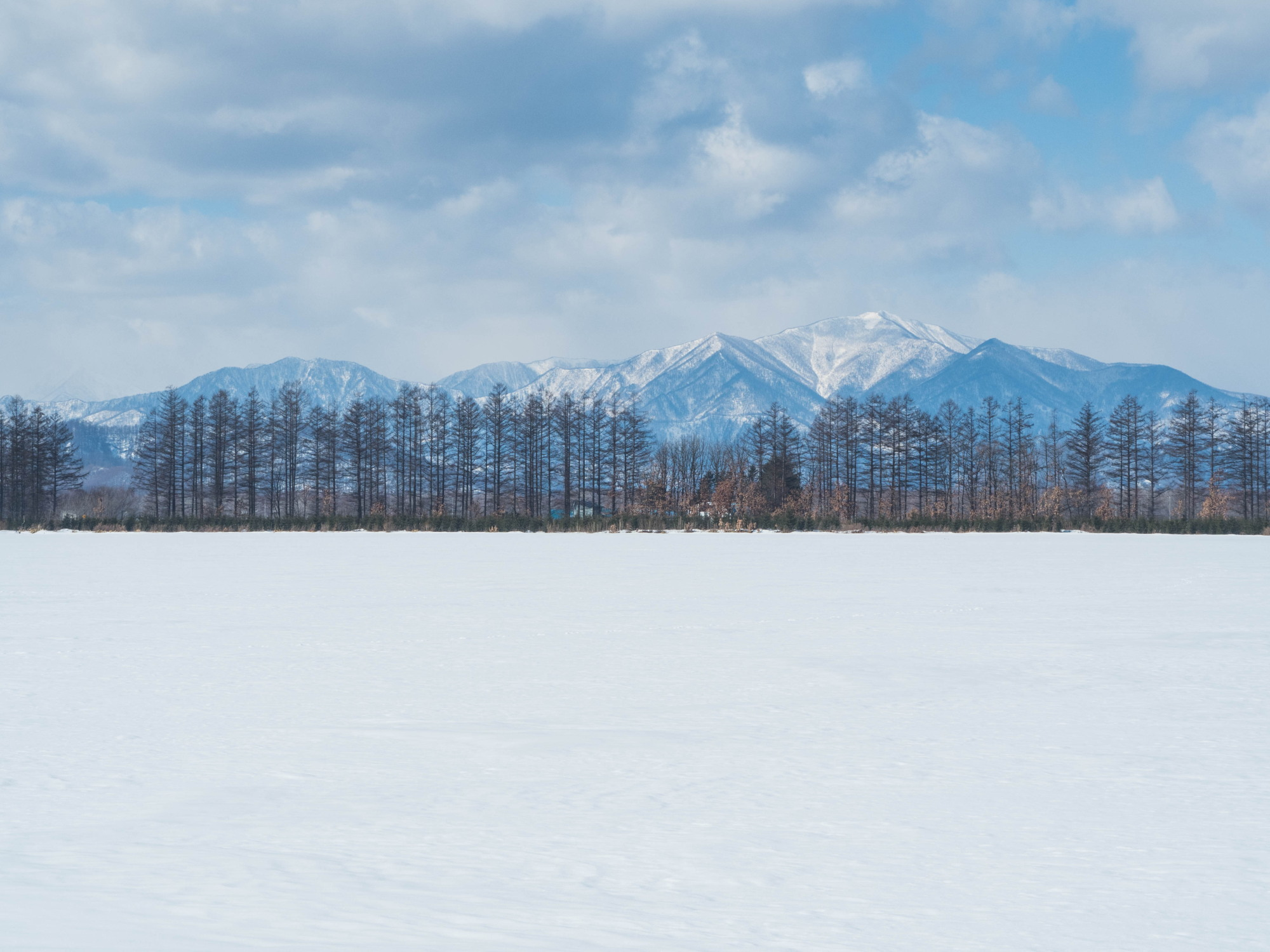 2月だけど春っぽい?中札内村とその周辺ツアー_f0276498_23565114.jpg