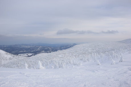 2018年12月22-24日 粉雪病の季節始まる。八甲田山で初滑り_c0242406_13115294.jpg