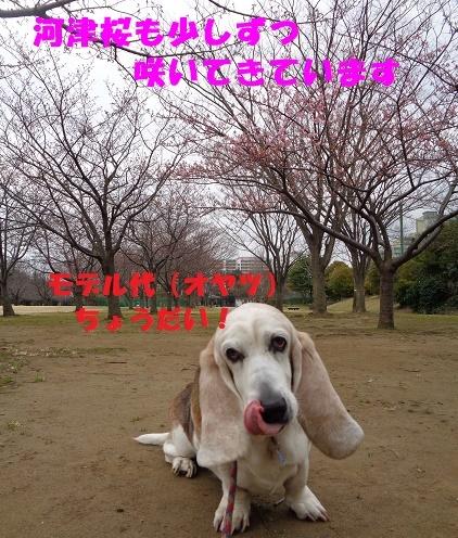 f0121712_00292806.jpg