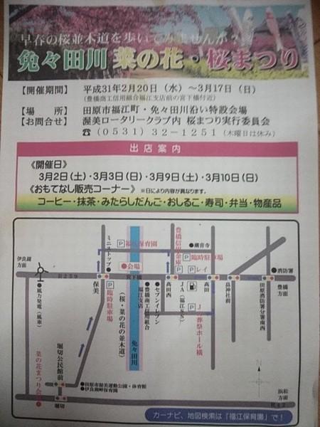 免々田川沿い・・・河津さくらと菜の花_b0151724_17090365.jpg