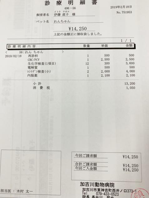 れんちゃん、かなり改善&収支報告_d0355333_15332637.jpg