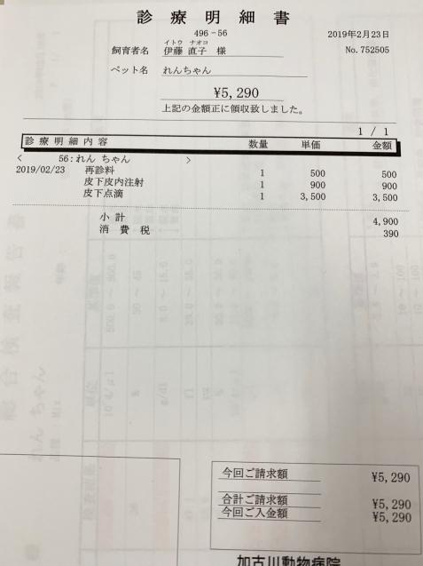 れんちゃん、かなり改善&収支報告_d0355333_15332784.jpg