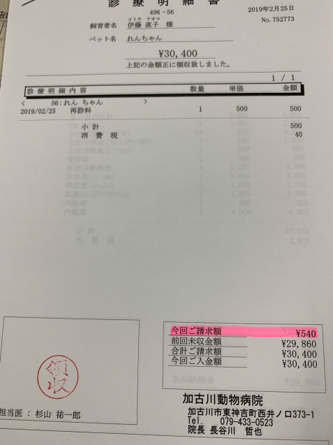 れんちゃん、かなり改善&収支報告_d0355333_15332952.jpg