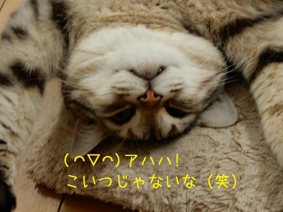 c0259945_14004043.jpg