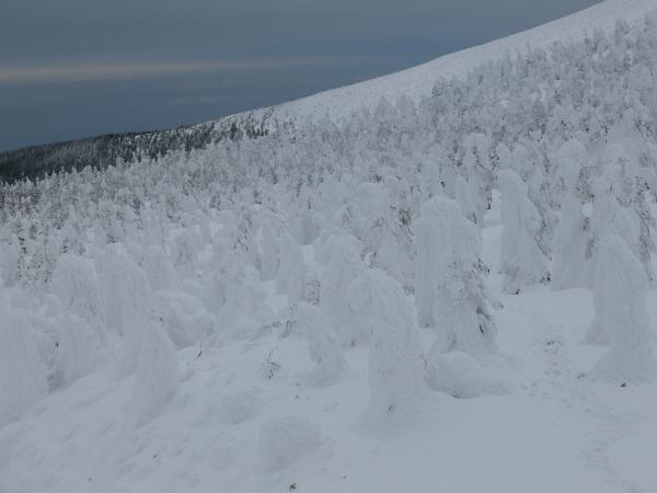 春間近、蔵王の樹氷群_a0351368_22341314.jpg
