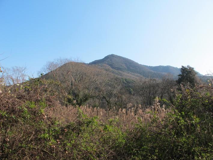 臼野の中山を登る 2019.2.26(火)_a0166196_14431785.jpg