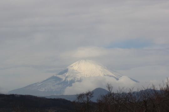【2019年2月 伊豆旅行①(吾妻山公園】_f0215714_17000781.jpg