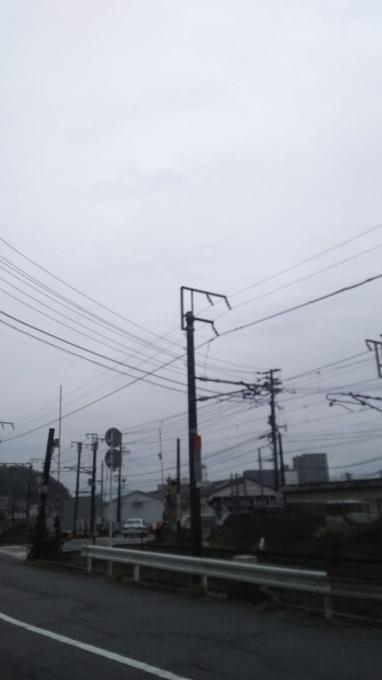 雨が上がり、曇り_e0094315_12224778.jpg