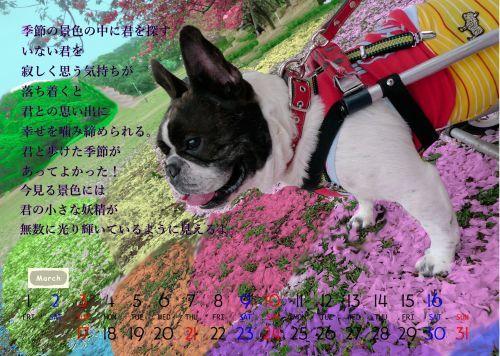b0307951_22454101.jpg